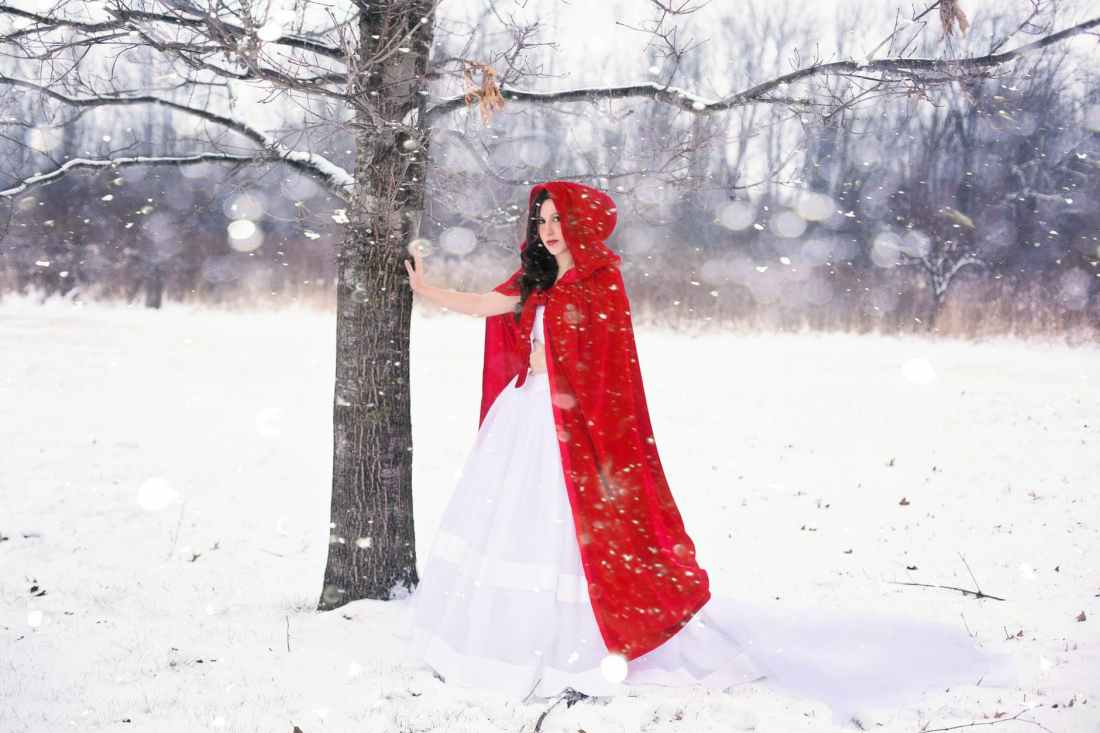 artistic christmas cold fairy tale